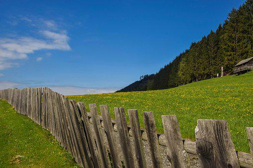 Meadow, Green, Landscape, Light, Fence, Nature, Grass