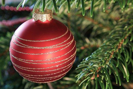 Christmas Pictures, Christmas, Pine Tree