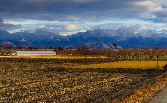 Mountain Landscape, Field, Mountains, Nature, Sky