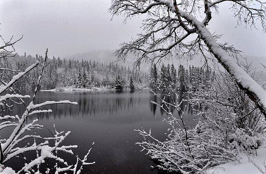 Landscape, Winter, Nature, Snow, Lake, Water, Trees