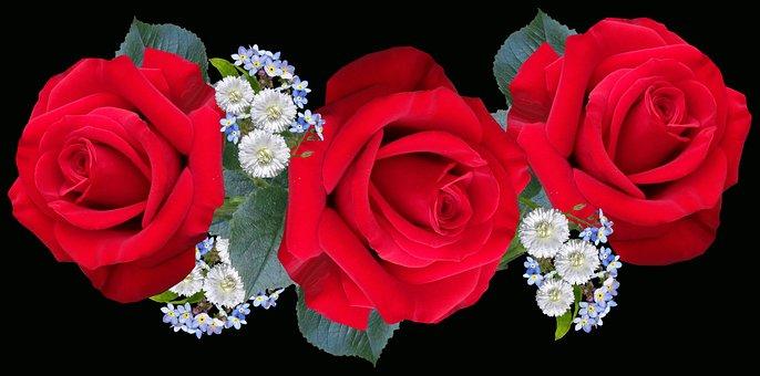 Flowers, Red, Roses, Romantic, Arrangement, Daisies