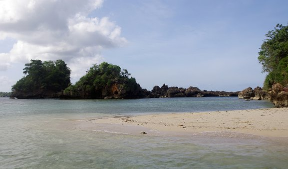 Beach, Sand, Water, Tree, Nature, Outdoor, Natural