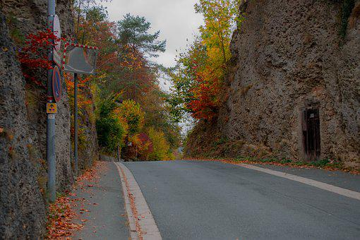 Road, Autumn, Landscape, Fog, Nature, Mood, Leaves