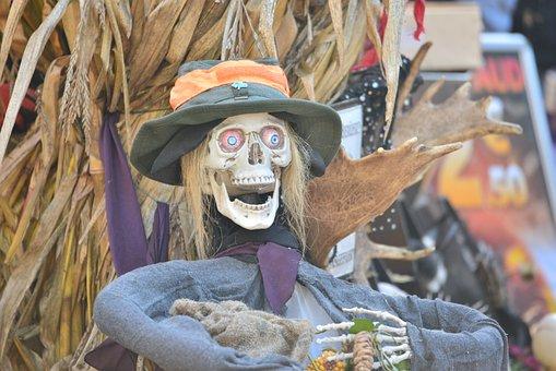 Halloween, Skeleton, Death, Bone, Skull, Pirate, Horror