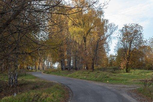 Autumn, Trees, Road, Landscape