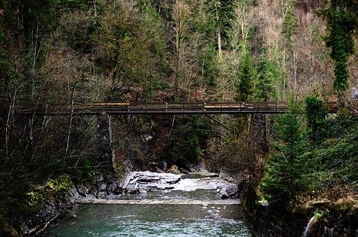 Bridge, Bridging, Forest, Ravine, Canyon, Waterfall