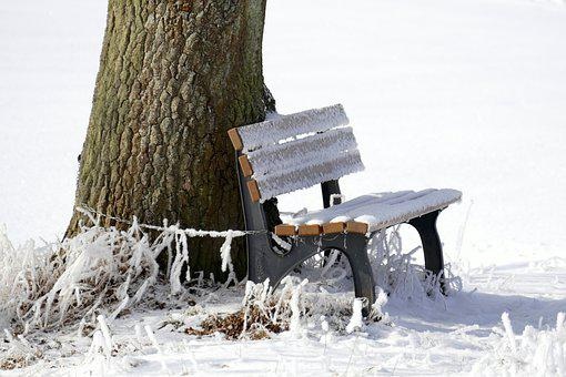 Winter, Frost, Bank, Landscape, Wintry