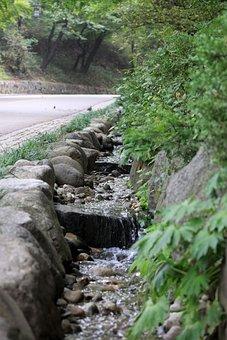Trails, The Creek, Streams, Creek, Water
