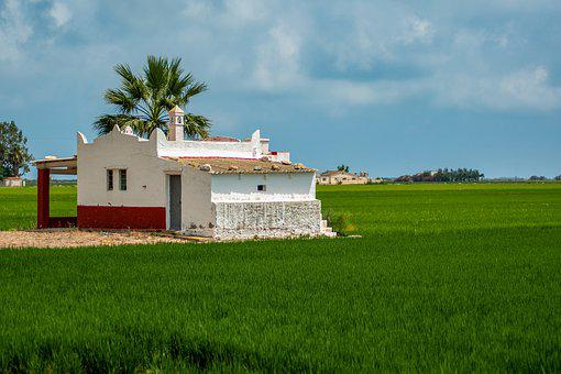 Spain, Rice Fields, Nature, Landscape, Ebrodelta
