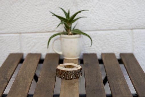 Table, Plant, Flowerpot, Wood, Cafe