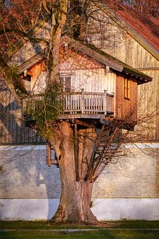 Treehouse, Log Cabin, Balcony, Wood, Bavaria, Building