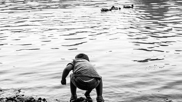 Boy, Water, Ducks, Summer, Lake, Outdoors, Children