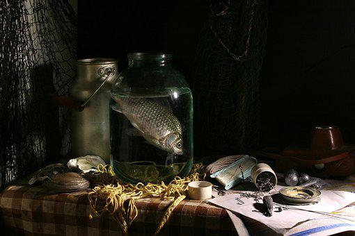 Still Life With Fish, Fishing, Catch, Crucian, Bank