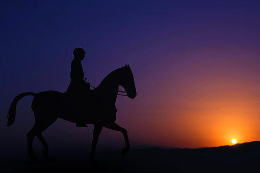 Horse, Riding, Man, Sunset, Person, Nature, Sky