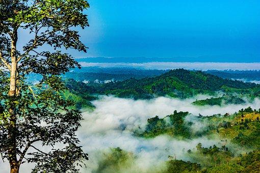 Bangladesh, Nature, Sajek, Landscape, Mountain, Trees