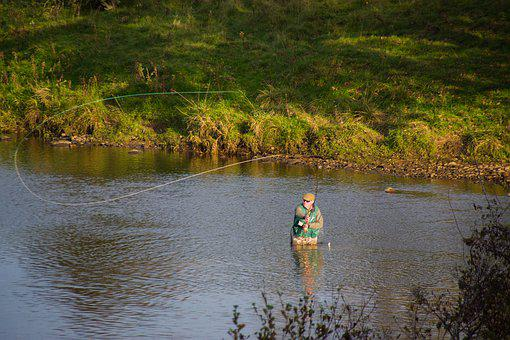 Fisherman, Angler, Fishing Rod, Fish, Water, Nature