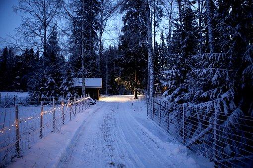 Winter, Snow, Christmas, Lights, Evening, Countryside