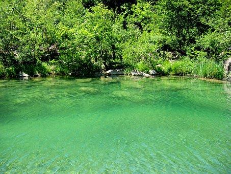 Water, River, Lake, Green, Door Gravel, Fresh, Waters