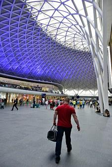Man, Traveler, Roof, Train, Train Station, Station