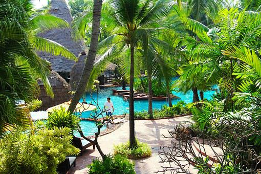 Resort, Hotel, Beach, Swimming, Pool, Tree, Green, Blue
