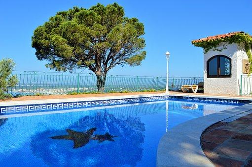 Pool, Garden, Tree, Green, Nature, Water, Blue, Sky