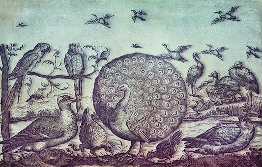 Vintage, Birds, Old, Peacock, Parrot, Crane, Chickens