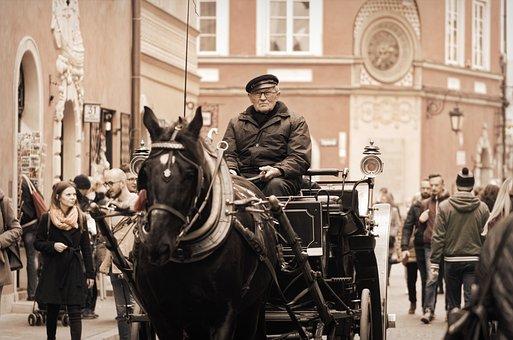 Coach, The Driver, Driver, Horse