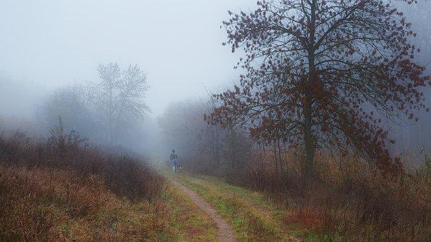Autumn, Fog, Morning, Girl, Dog, Stroll, Romantic, Mood