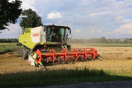Harvest, Combine Harvester, Agriculture, Field, Cereals