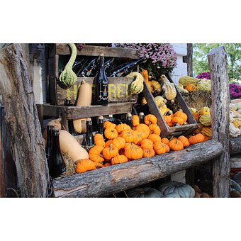 Halloween, Pumpkin, Fall, Food, Orange, Decoration