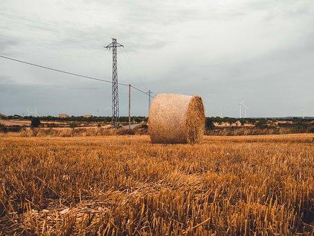 Rural, Almatret, Lleida, Spain, Landscape, Nature