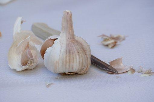 Garlic, Allium Sativum, Look, Plant, Flora, Nature