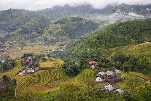 Mountain, Landscape, Rice Terrace, Rice Field