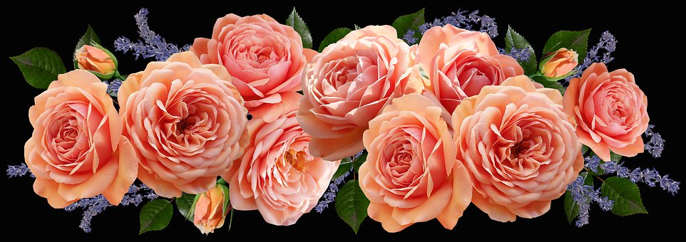 Flowers, Roses, Lavender, Fragrant, Arrangement, Garden