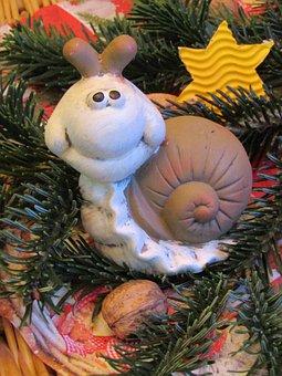 Snail, Way To The Crib, Star, Tannenzweig, Walnut, Nut