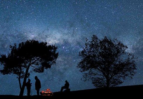 Night, Stars, Trees, Hikers, Lights, Sky, Cosmos