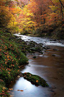 Landscape, Natural, Autumn, Torrent, 赤石川