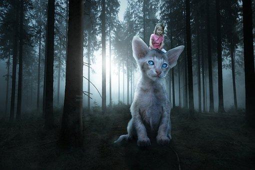 Giant, Cat, Girl, Composing, Large, Catzilla, Fantasy