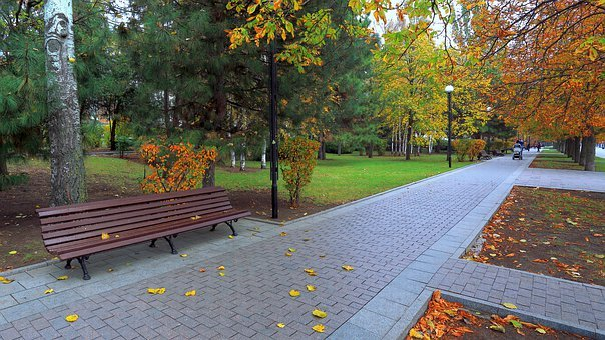 Autumn, Park, Bench, Track, Listopad, Golden, City