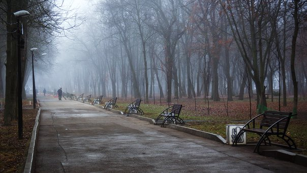 Autumn, Morning, Park, Fog, Track, Benches, Damp