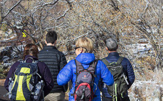 Zion, Snow, Hikers, Backpack, Family, Trees, Path