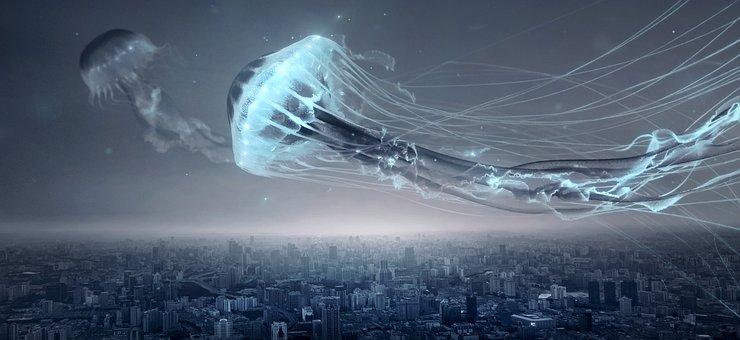 Fantasy, Jellyfish, City, Night, Flying Object, Float