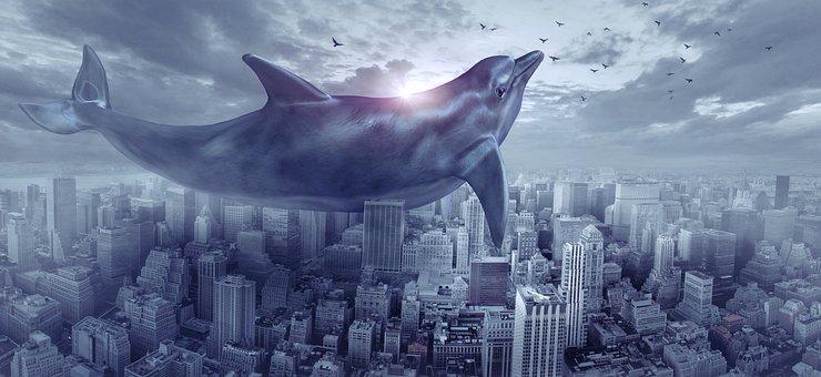 Fantasy, Dolphin, City, Flying, Huge, Float, Sky