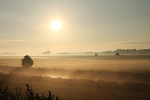 Sunrise, Fields, Fog, Early Morning