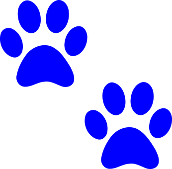 Paw Prints, Dog, Paw, Print, Cat, Foot, Pet, Footprint