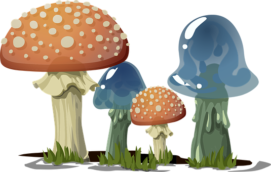 Mushrooms, Toadstools, Fungi