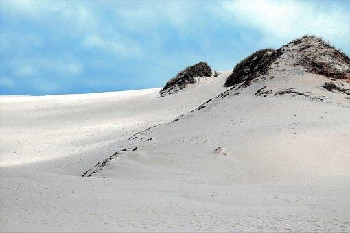 Leba, Shifting Sand Dunes, Vacations, Nature, Water