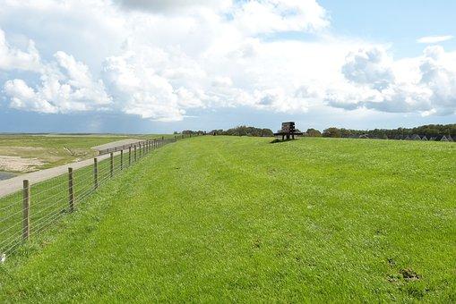 Summer, Dike, Pasture, Meadow, Bank, Break, Relaxation