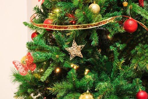 Christmas Tree, Christmas, Decorative, Home, Stars, Red