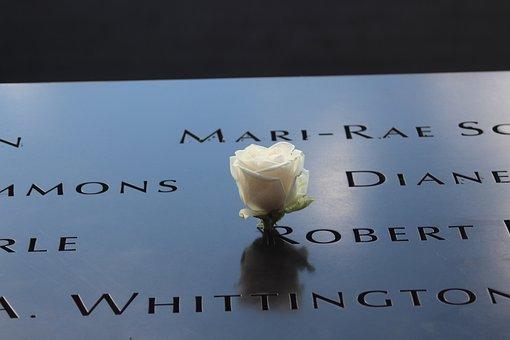 Tragecy, 9 11, 11 September, Wtc, World Trade, Rose